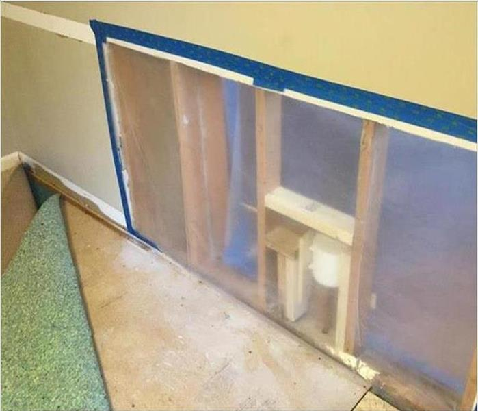 Mold Damage from Unwanted Water in Dallas After