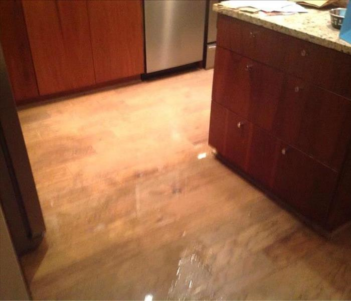 water spill on kitchen floor, hardwoods