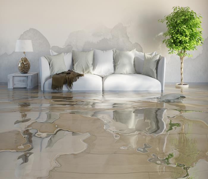 Water Damage What Is Dallas Water Damage Remediation?