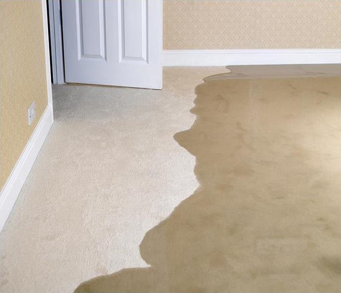 Storm Damage What SERVPRO Can Teach You About Flood Damage In Your Dallas Home
