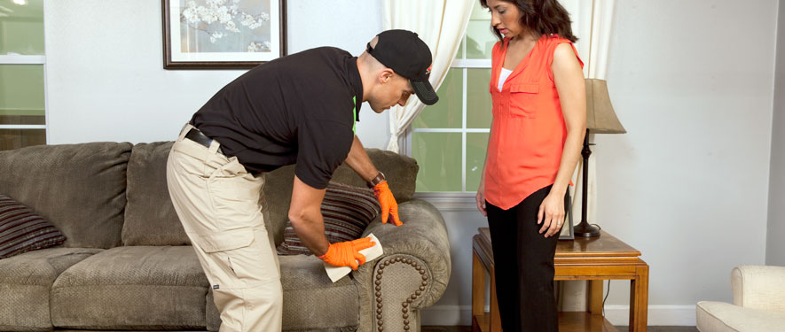 Dallas, TX carpet upholstery cleaning
